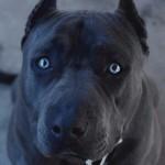 Картинка профиля maloy:S32
