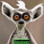 Картинка профиля Dozover