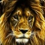Картинка профиля Фаворит