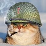 Картинка профиля Шапка