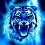 Картинка профиля 13934322